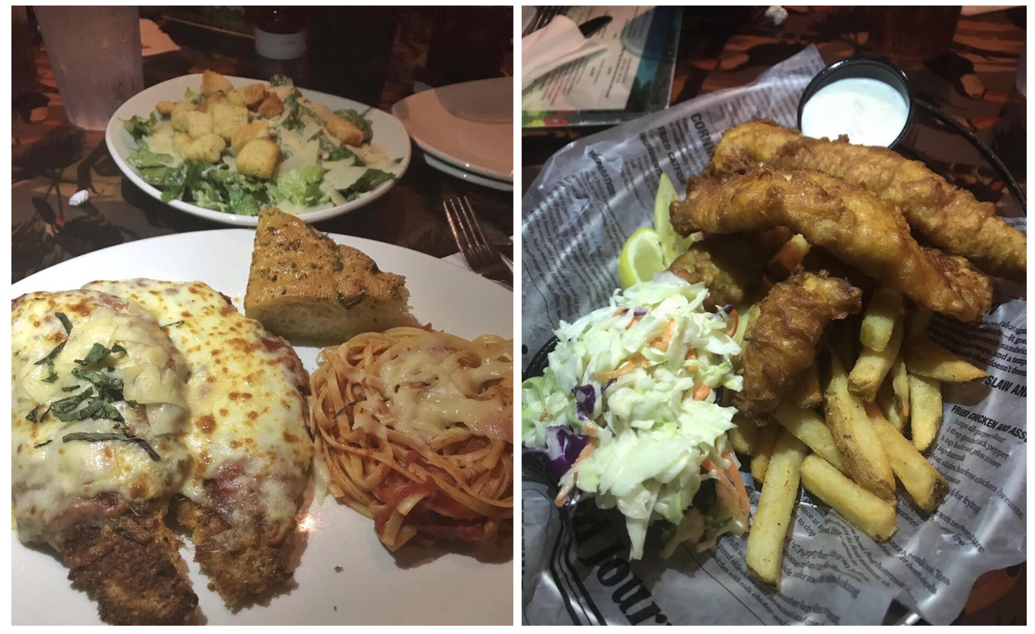 rainforest-comida
