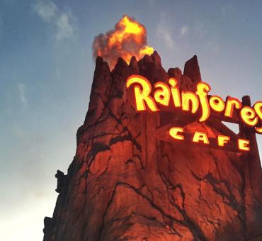 ORLANDO: RAINFOREST CAFE - UMA REFEIÇÃO NA FLORESTA